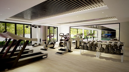 Our Luxurious Indoor Treadmills Fitness Gym